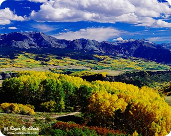 colorado.fall.colors.c092997.L4.14b2-700